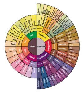 Kahve Kavurma ve Aroma Lezzet İlişkisi